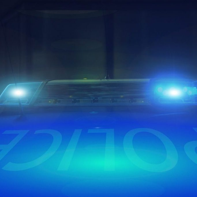 Police - Blue Lights