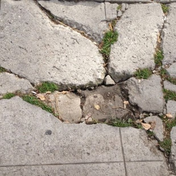 Sidewalk repair needed